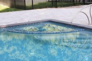 Pikesville, MD Swimming Pool Renovation 7